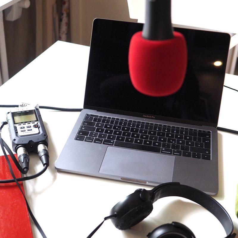 Podcast-Pinselohr